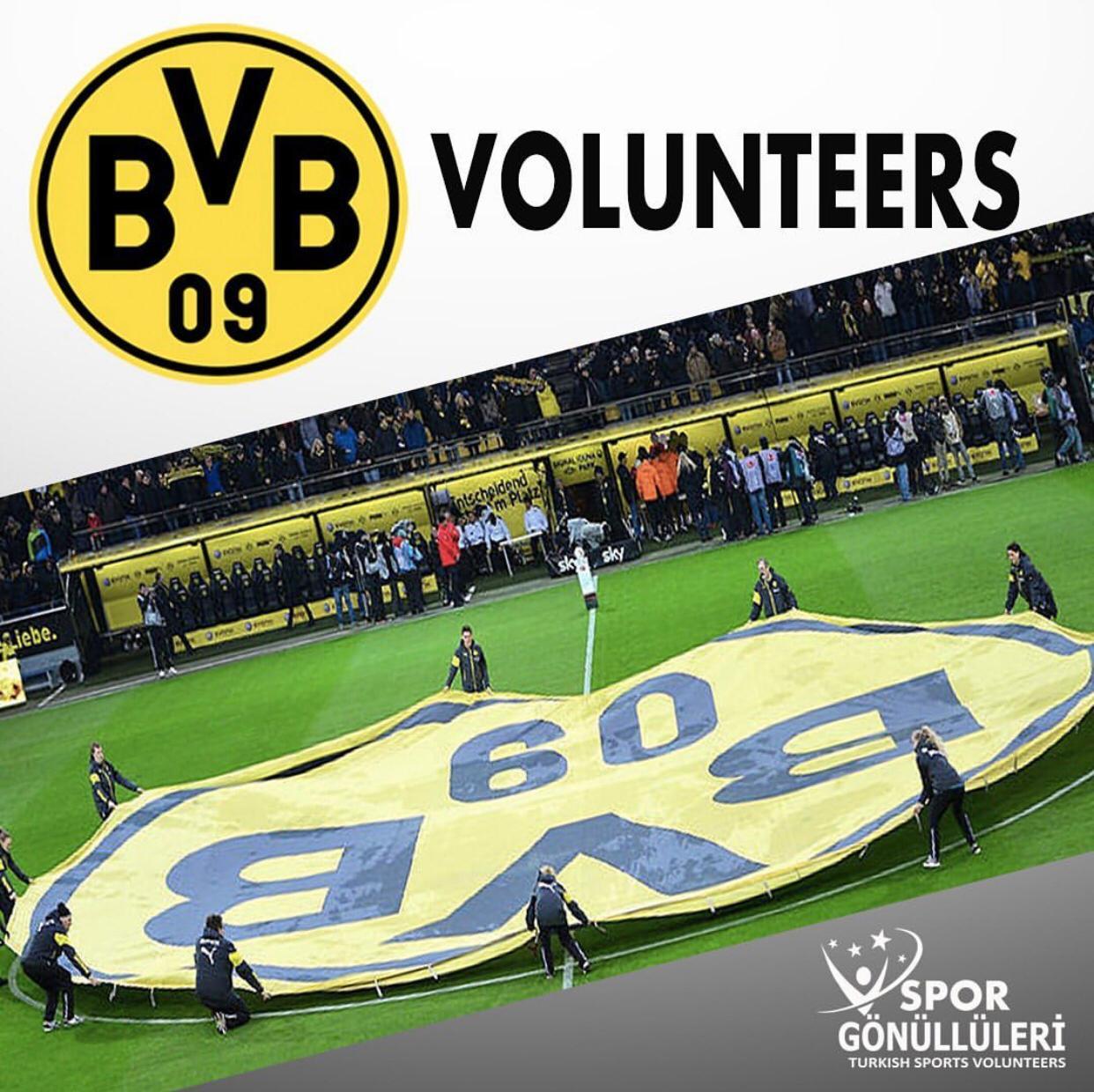 BVB gönüllüleri